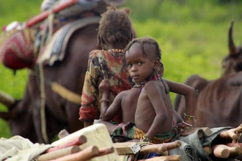 Central Africa tours