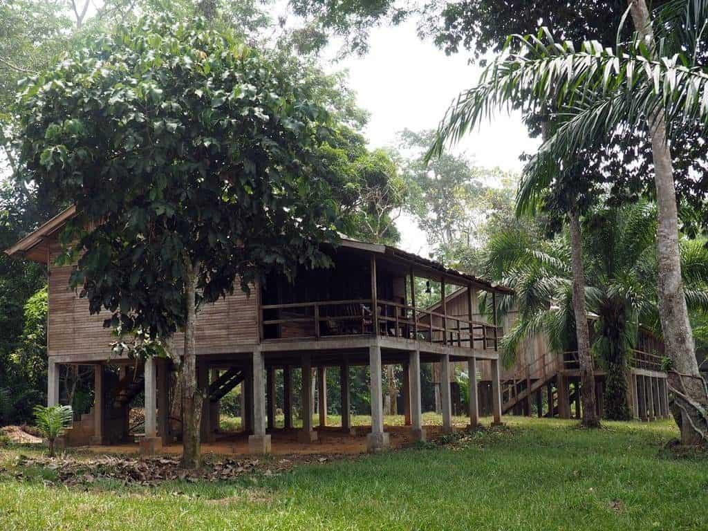 Doli Lodge Dzanga Sangha