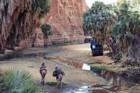 Guelta de Bachikele en Ennedi