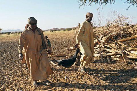 Turismo en Chad