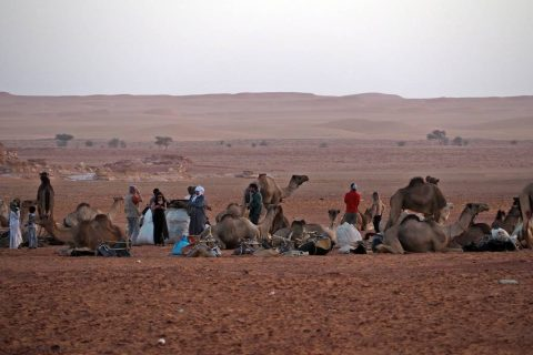 Caravana nomadas Sahara