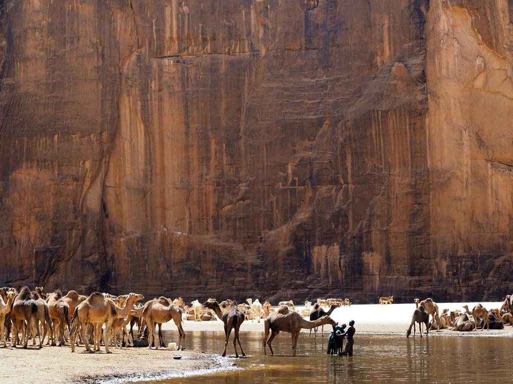 Guelta de Archei