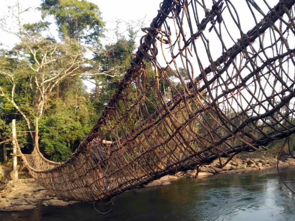 Puentes de lianas