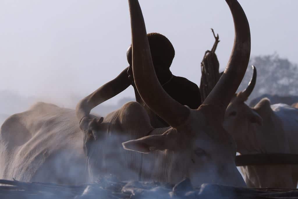 Mundari tribe
