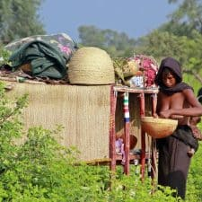 Expedicion a Chad Camerun y Republica Centroafricana