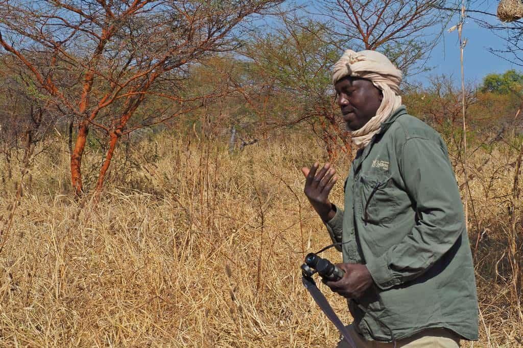 Walking safari in Zakouma