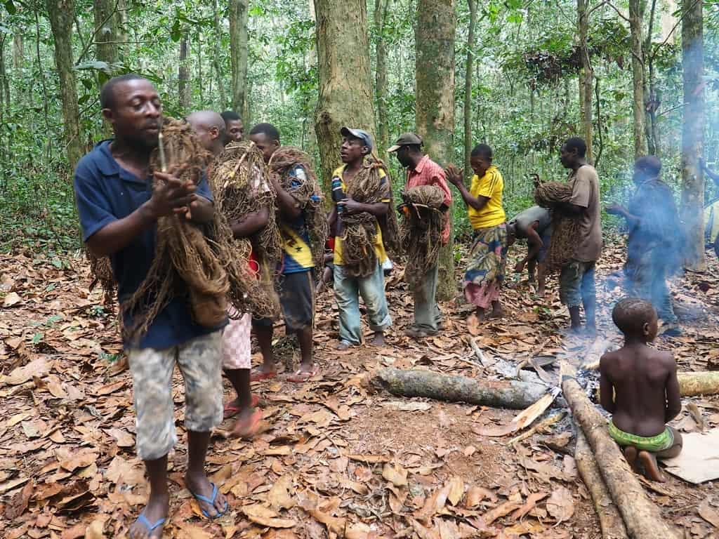 Pygmies Africa