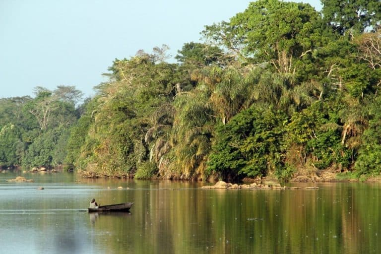 Santuario tiwai Island, Sierra Leona