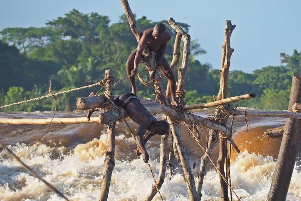 Wagenia Congo