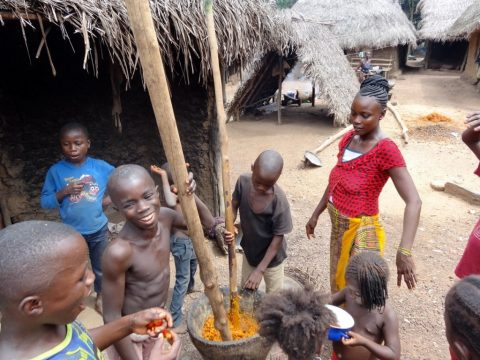 Viajes a Guinea Conakry