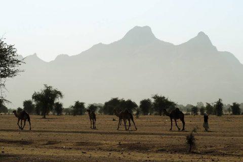 Turismo en Guera Chad