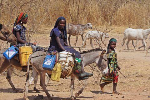 Agua en Sahel