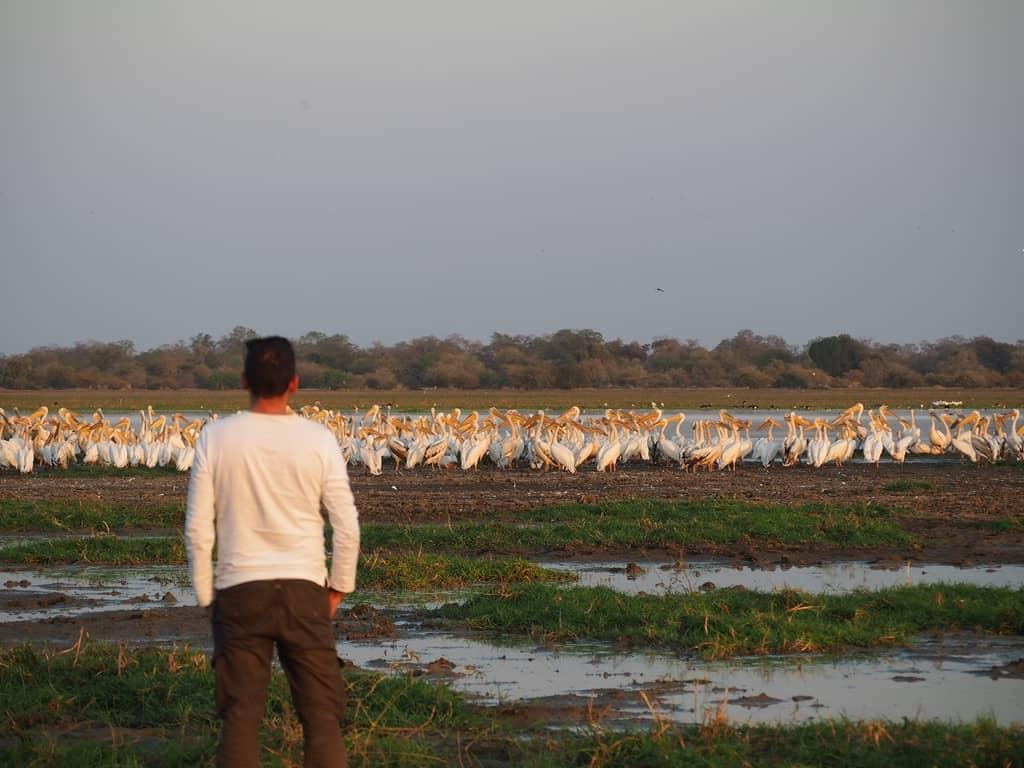 Viajes en Africa en camion