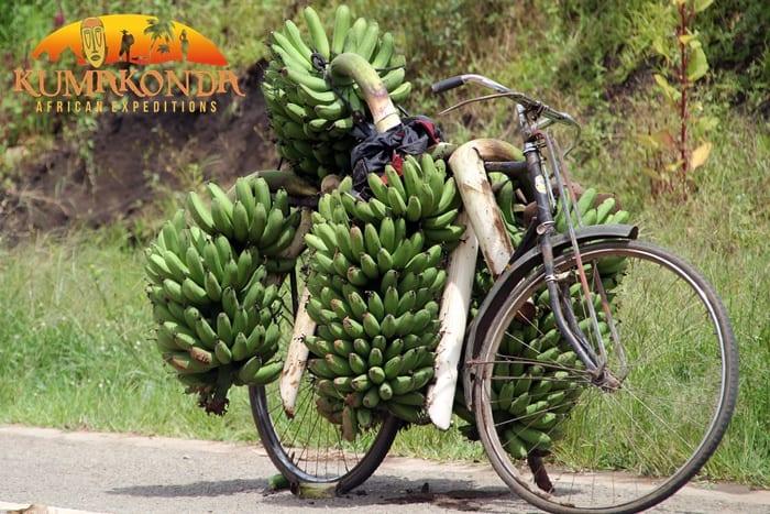 Viajar a Costa de Marfil