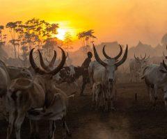 Viajes a Sudan del Sur
